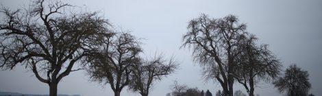 Kosmischer Wetterbericht – Dezember
